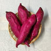 JAS認証・有機栽培のサツマイモ「紅あずま」 4kg(7~9本) 4kg 果物や野菜などのお取り寄せ宅配食材通販産地直送アウル