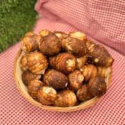 【竹粉育ち】農薬・化学肥料不使用栽培 里芋2kg(小ぶりサイズ) 2kg 野菜(里いも) 通販