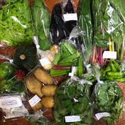 新鮮お野菜おまかせセット(7品以上) 80サイズ(5kg以内)のお箱にいっぱいにしてお送り致します。 愛媛県 通販