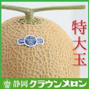 静岡クラウンメロン 特大玉(白等級) 約1.6~2.0Kg 果物(メロン) 通販