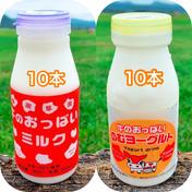 渡辺体験牧場 牛のおっぱいミルク10本、のむヨーグルト10本セット ミルク200ml×10本、ヨーグルト150ml×10本