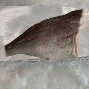 【冷凍】コショウダイフィーレ腹骨取り(加熱用) 真空 1枚入り 1枚 鹿児島県 通販