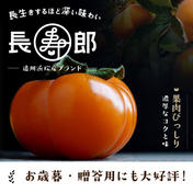 糖度16度保証 お歳暮用4L6玉入り 古い樹から採れた長生き次郎柿『長寿郎』 1.5kg 果物(柿) 通販