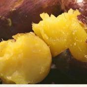 【11月発送予約品!ねっとり系】自然栽培べっぴんやさいのさつまいも(紅はるか)約2kg サイズ混合約2kg 島根県 通販