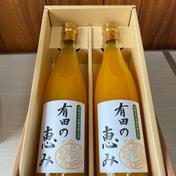 有田の恵み 720ml×2本 飲料(ジュース) 通販