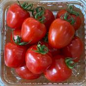 トマトベリー無農薬栽培🍅 1.2kg 野菜(トマト) 通販