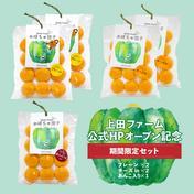 上田ファームのかぼちゃ団子 期間限定セット 300g(25g×12個入)×5P 上田ファーム店