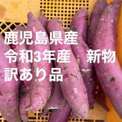 新物!! 紅はるか(令和3年9月収穫)お届けします!(60サイズ 総量2kg )訳あり品 2kg(総重量) 野菜(さつまいも) 通販