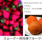 スムージー用 みかん500g いちご500g 冷凍フルーツセット 各500g 果物(セット・詰め合わせ) 通販