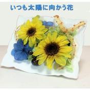 太陽に向かう花の贈り物【大切な人への贈り物】 その他(花・植物) 通販