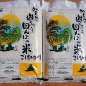 千葉県産コシヒカリ 白米 10kg 新米 5kg×2 千葉県 通販