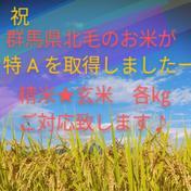 群馬県産コシヒカリ 玄米20㎏ 送料込み(10㎏×2袋) 20㎏ 群馬県 通販