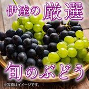 道の駅セレクト ふくしま旬の完熟ぶどう【おすすめ詰合せ2kg】 約2kg(3〜4房) 果物(ぶどう) 通販