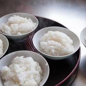 【新米】令和3年産:農薬も肥料もサヨナラ米。甘くてお米の粒を感じるミルキークイーン! 1.8K白米 滋賀県 通販