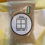 【国産】喜界島産ザラメ糖 300gと300gのセット レターパックライト発送 300g+300g   調味料 通販