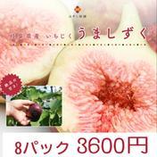 林柿園のいちじく うましずく 3.3-3.6kg 林柿園