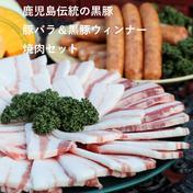 【鹿児島伝統の黒豚】 豚バラ&ソーセージ 焼き肉セット 豚バラ300g×2パック/ソーセージ200g(5本入り)×2パック 肉 通販