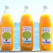 【贈答用】島の柑橘ジュース飲み比べセット(3本入り) 1リットル×3本 愛媛県 通販