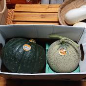 産直農家のホクホク特大南瓜と甘~い赤肉メロン 4.4kg 前後 果物(セット・詰め合わせ) 通販