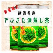 【数量限定!】令和3年度産 やまたか農場の深蒸し茶 200g お茶(緑茶) 通販