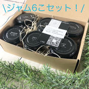 和歌山の果実たっぷり堪能!ジャム6個セット ジャム100g×6こ(ゆらみかん1こ+おすすめ5こ) 加工品(ジャム) 通販