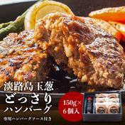 【ハンバ-グ専用ソース付き】淡路島たまねぎハンバ-グ150g×6個 900g 肉 通販