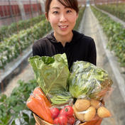 もぐはぐ農園 畑より採りたて発送!Ⓐ静岡厳選野菜セット(6品) 6品以上
