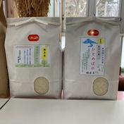 『訳あり』あきたこまち/ひとめぼれ精米3kg食べ比べセット 3kg×2袋 6kg 秋田県 通販
