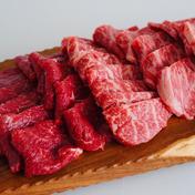 お試し期間限定価格【赤身セレクト】佐賀県産和牛希少部位焼肉 2-3人前 450g 肉(牛肉) 通販