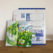 【送料込】レターパック便 おくみどり・ヒモ付きティーパック おくみどり100g、ティーパック3g×30入り お茶(緑茶) 通販