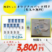 数量限定おまけ付き 10本セット 怪獣サイダー 10本 広島県 通販