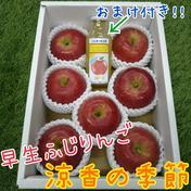 早生ふじりんご「涼香の季節」♪おまけ付き♪ 2kg箱入り 果物や野菜などのお取り寄せ宅配食材通販産地直送アウル