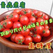 【コスパ良し】訳あり 2kg セット 新鮮ミニトマト 2kg 野菜(トマト) 通販