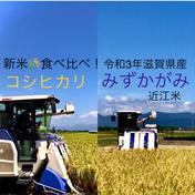 新米食べ比べ!令和3年滋賀県産コシヒカリ ➕みずかがみ コシヒカリ 白米3kg➕みずかがみ白米3kg 果物や野菜などのお取り寄せ宅配食材通販産地直送アウル