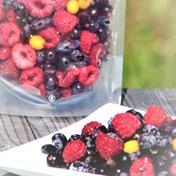北海道十勝産冷凍ミックスベリー 500g 500g 果物 通販