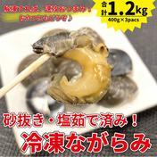 【冷凍便】1.2kg!解凍してすぐに食べられる、九十九里産冷凍ボイルながらみ! 1.2kg 道の駅みのりの郷東金