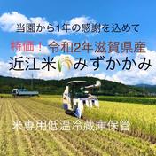 高島農産(ないとうさん家の野菜)  特価!近江米みずかがみ一等米玄米 約5㌔リサイクル箱 玄米約5㌔
