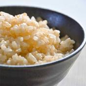 【新米玄米】10kg!冷めても旨い!清流の里で育てたもっちりコシヒカリ【令和3年産】 玄米10㎏ 農園 陽だまりの芽