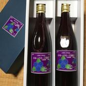 ブルーベリーの恵み720ml 2本  720ml  2本 飲料(ジュース) 通販
