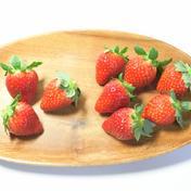 森いちご農園とちおとめプレミアム-栃木県産- 300g✖️2パック 果物(いちご) 通販