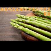 【朝採り】あきらさん家のアスパラガス 夏芽1.2kg      秀品1.2kg Lサイズ あきらさん家のアスパラ
