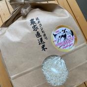 コウノトリ誕生記念 「幸せを運ぶお米」こしひかり5kg✕2袋 5kg✕2 米 通販