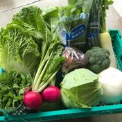 高島農産(ないとうさん家の野菜) ちょっとした贈り物にも!コロナに負けるな!湖国からの野菜セット 80サイズ5kg以内