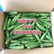 【鹿児島産】甘塩オクラ箱込み2キロ^_^ 箱込み2キロ前後(360本前後) 野菜(オクラ) 通販