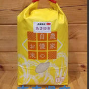 青森県産あさゆき10kg 10kg 果物や野菜などのお取り寄せ宅配食材通販産地直送アウル