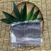 【冷凍】オキザワラフィーレ腹骨取り(加熱用) 真空 1枚入り 1袋/約1.2kg~2kg 鹿児島県 通販