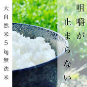 大自然米 無洗米5kg 5kg 福岡県 通販