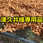 津久井様専用品 洗い金ごま 1.5kg 群馬県 通販