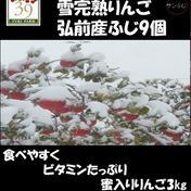蜜入り雪完熟りんご最上級品3kg(9個入り) 3kg 果物 通販