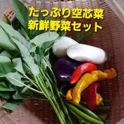 空芯菜たっぷり野菜セット 80サイズ 果物や野菜などのお取り寄せ宅配食材通販産地直送アウル